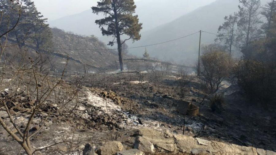 Alivio en Córdoba: Regresó la lluvia después de cinco meses y se extinguieron todos los focos